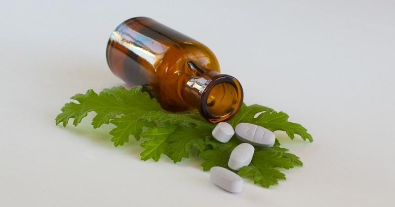 Medicina Alternativa e Disfunzione Erettile: Rimedi dalle Piante