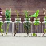Quale Viagra Naturale è acquistabile Senza Ricetta Medica?